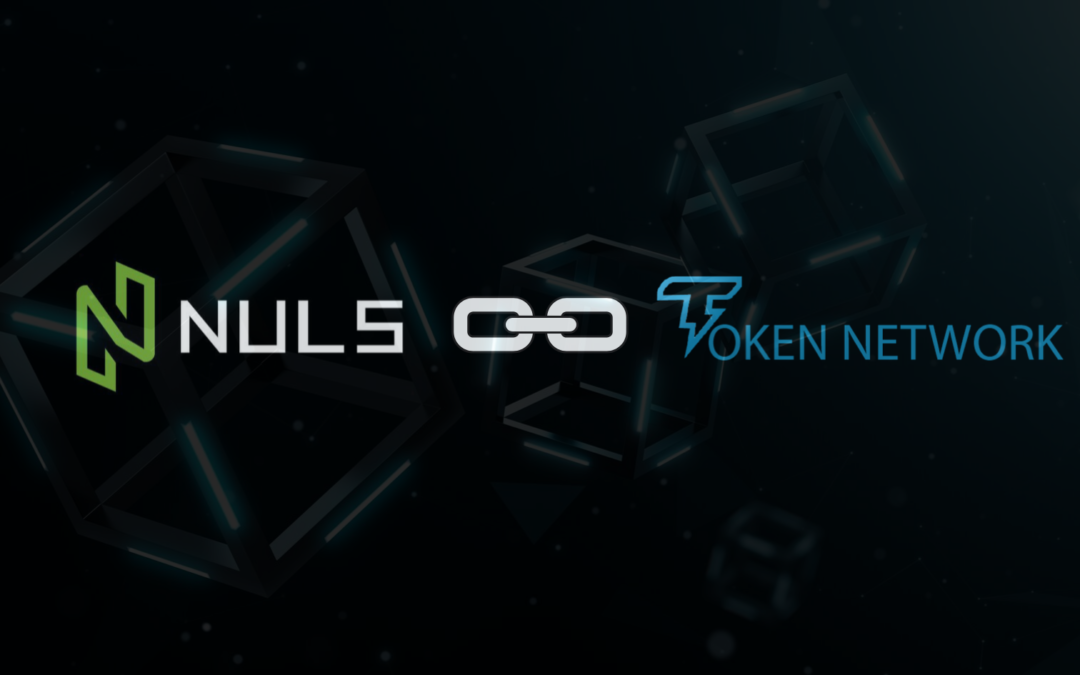 Token network to build ecommerce protocol using Nuls Chain Factory.